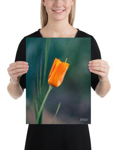 enhanced-matte-paper-poster-_in_-12x16-5fdad10c83fd5 (1)